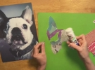 Pet Portraits Paper Collage