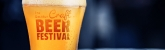 2019 Decatur Craft Beer Festival - Fundraiser